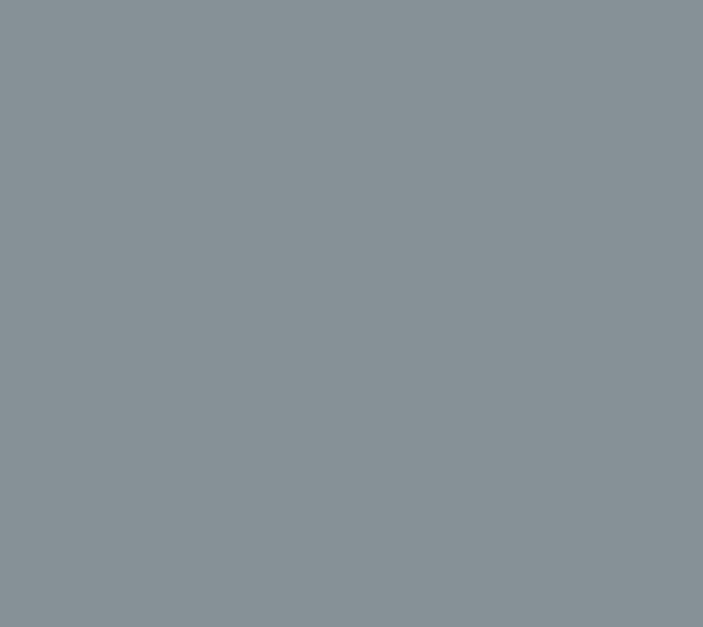 RAL7001 Silbergrau