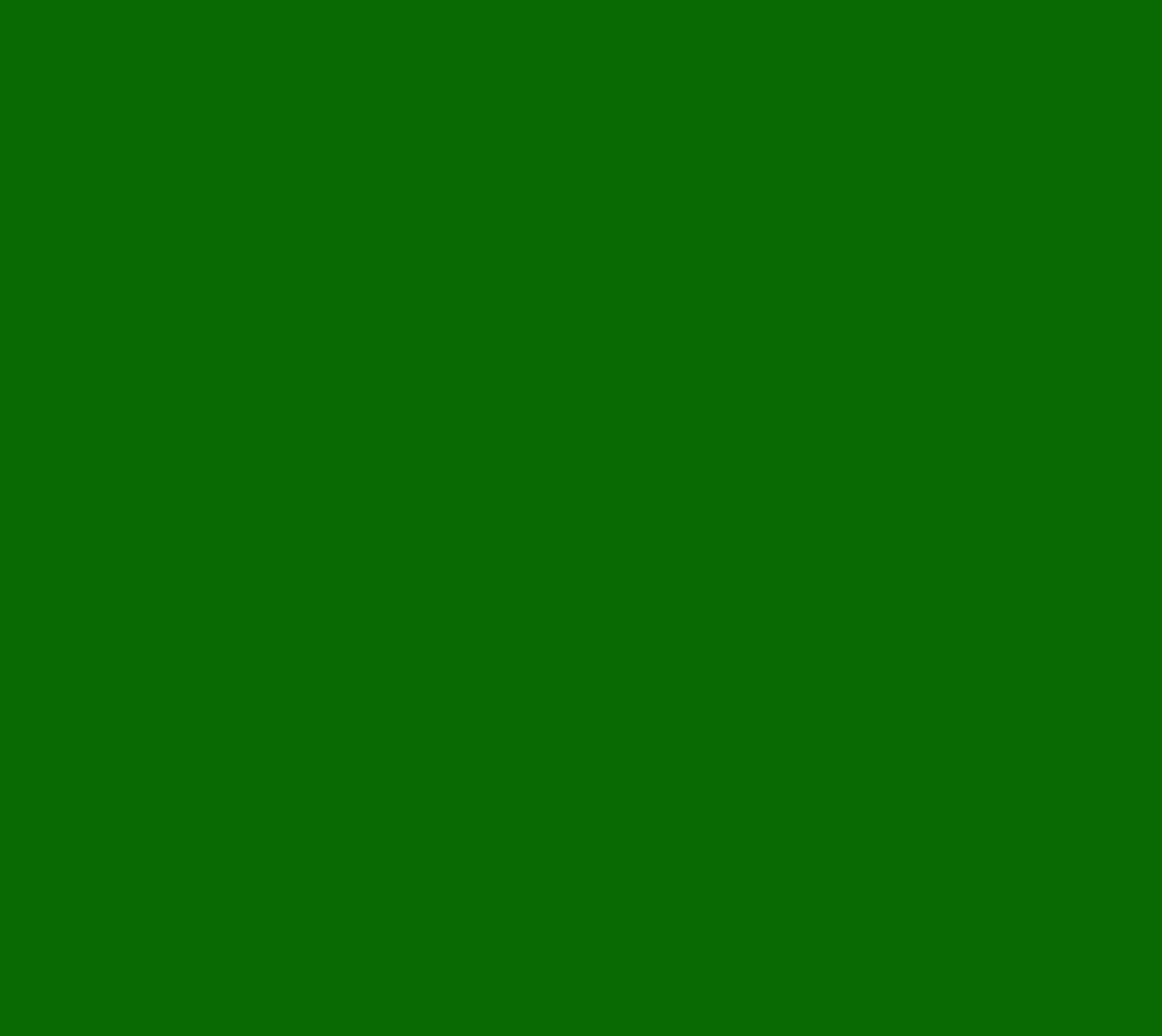 RAL6002 Laubgrün